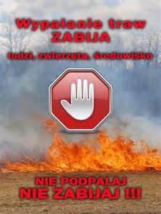 Obrazy: nie_wypalaj_traw.jpg